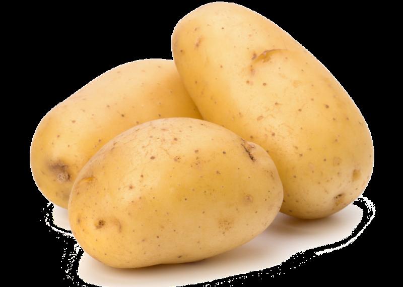 Patates Hakkında